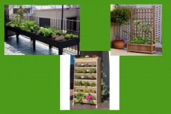 Create An Apartment Balcony Vegetable Garden
