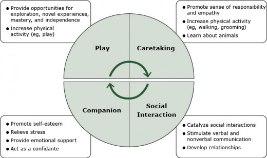 Gadomski et al. (2015), model of core values and complex social norms facilitated by having a family dog