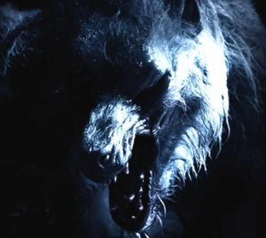 Scary lycan werewolf head photo
