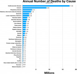 Coronary Artery Disease: The World's Leading Cause of Death