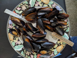 Mussels in Sauces from Frozen
