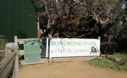 Bonorong Park Wildlife Centre