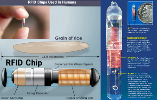 RFID CHIP : Small as a grain of rice