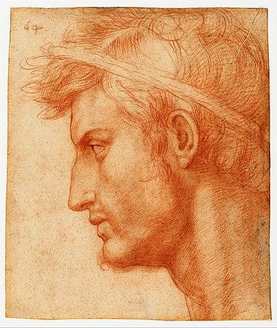 Study for the Head of Julius Caesar, by Andrea del Sarto