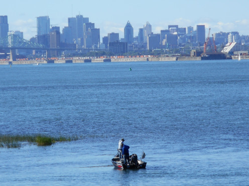 Montreal seen from 'île Charron, Longueuil