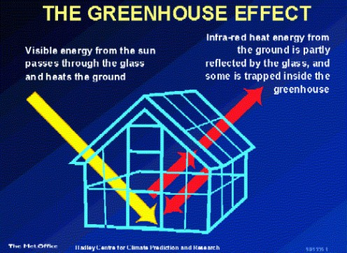 How do cold countries use the phenomeon of green house effect for this is known as green house effect the greenhouses are used in cold countries to facilitate plants with sunlight during the day time and optimum ccuart Image collections
