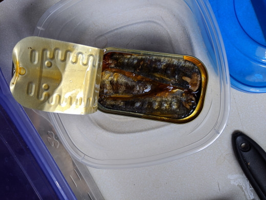 Mmmm. I see the sardines.