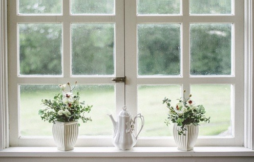 White flower dispaly on window sill