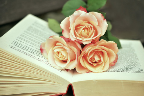 A rose that suits a book
