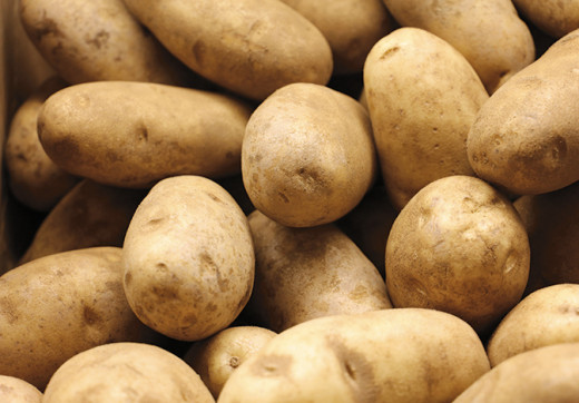 Back in the year 2000, russet potatoes cost 79 cents for a five-pound bag.