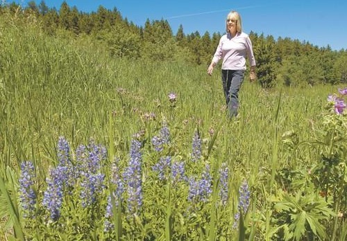 Jo Anne Wroe wanders in the meadows of her log home above Red Lodge to feel close to her missing daughter Amy Wroe Bechtel. Photo courtesy of the Billings Gazette.