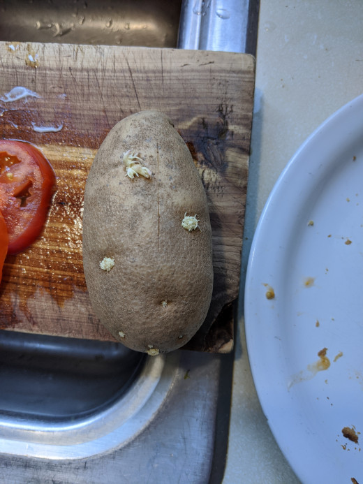 Potato has eyes or roots sprouting