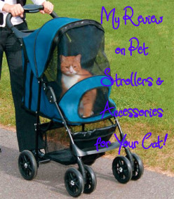 My Review on Pet Strollers & Accessories for Your Cat