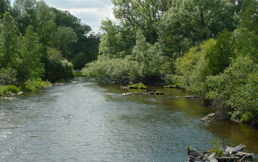 The River Raisin is located in rural Monroe County, Michigan, where a fisherman located the body of Nevaeh Buchanan in 2009.