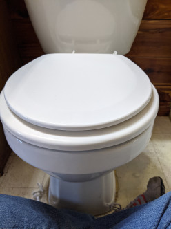 Toilet Seat Replacement