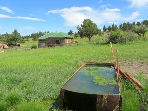 The Nelson Ranch House and spring