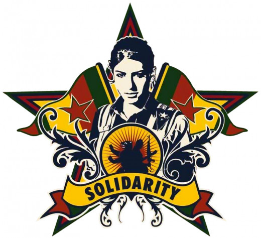 the Rojava Revolution's community defense can serve as an inspiration for America