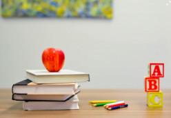 International Schools Against Public Schools