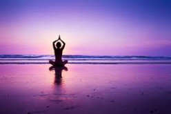 Yoga and Vedic Studies