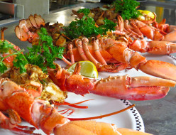 Hungry?  Have a Lobster Feast