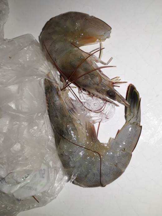 fresh tiger prawns