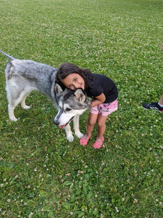 Nature, pets and kids help in healing