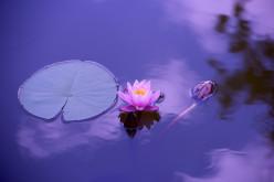 Yoga and Meditation Enhance Medical Treatments