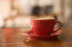 Tea, the Enemy or Friend of Our Health?