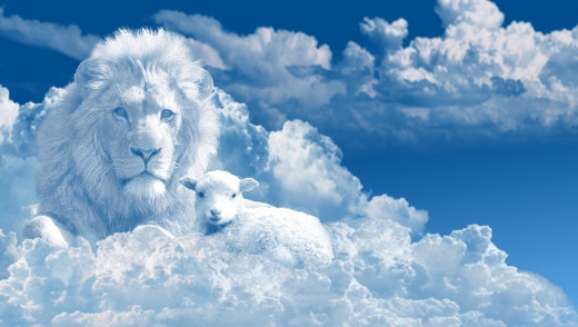 Yeshua came as a lamb to be sacrificed for our sins. Someday, perhaps soon, He will come as a lion. (Revelation 5:5)