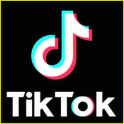 The Rise of Tiktok amid the Pandemic
