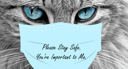 Manatita challenged me to show a kitty with a protective mask.