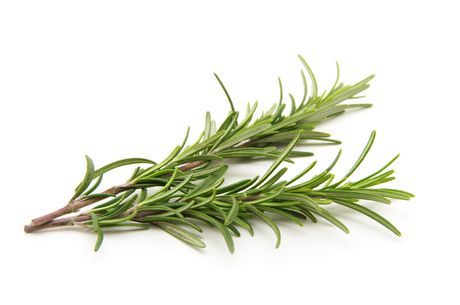 Rosemary is a popular Natural health aid for some people as well as being used for cooking.
