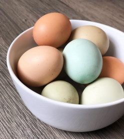 How to Boil Eggs? Questions and Answers About Eggs Plus 5 Easy Recipes for Them