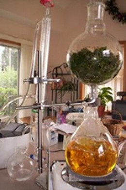 distillation process distillation is the most common method of ...