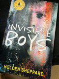 Can the 'Invisible Boys' Be Used for Schools?