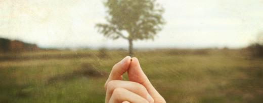 Faith of a mustard seed...