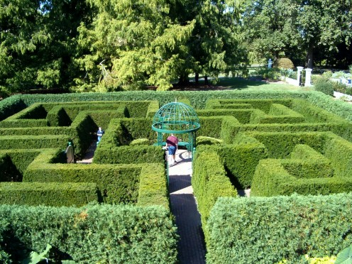 Garden maze, a maze for humans to have fun in!
