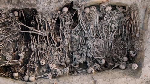 Ancient DNA traces the Black Death to Russia's Volga region