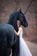 A Simple Tale of Love, a Beautiful Girl, and Horses