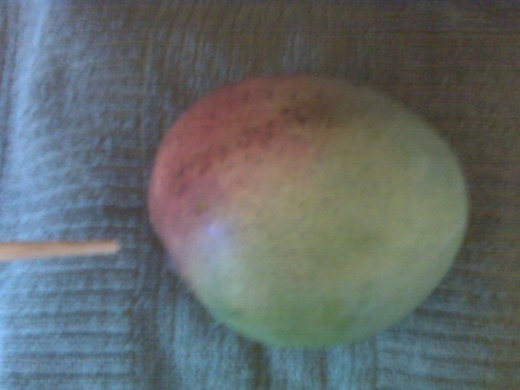 "Indicates ""vine"" end of mango. Where to start cutting."