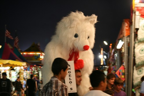 Everywhere you look, people are roaming the Fair with huge stuffed animals and other great prizes.  I even won a bear myself!  You get 25 balls for $5.oo!  Not like any carnival I've been to!