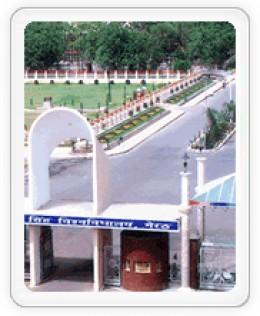 CCS University Meerut Results 2009