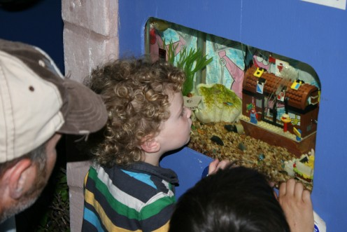 One of the inside features is for young and old alike, very creative tropical fish tanks, fresh water and salt water. An informative and really fun exploration!