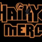 haikyuu Merche profile image