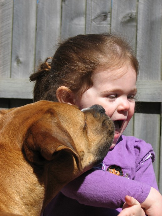 Dogs are great at giving big, wet kisses! (Photo by Trisha Shears)