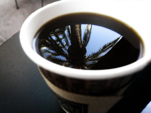 Do you take palm trees in your coffee or just cream? Photo by billaday @ flickr