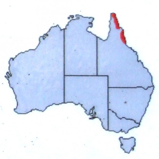 Area marked in red where Cassowaries are found in Australia.