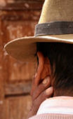 Mexican Migrant Workers: Nuisance or Necessity?