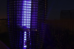 Closer view of a bug zapper.  Photo by http://www.flickr.com/photos/stoleaglance/2819276930/