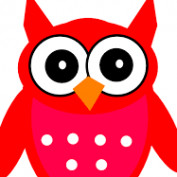 Alexx Hall profile image